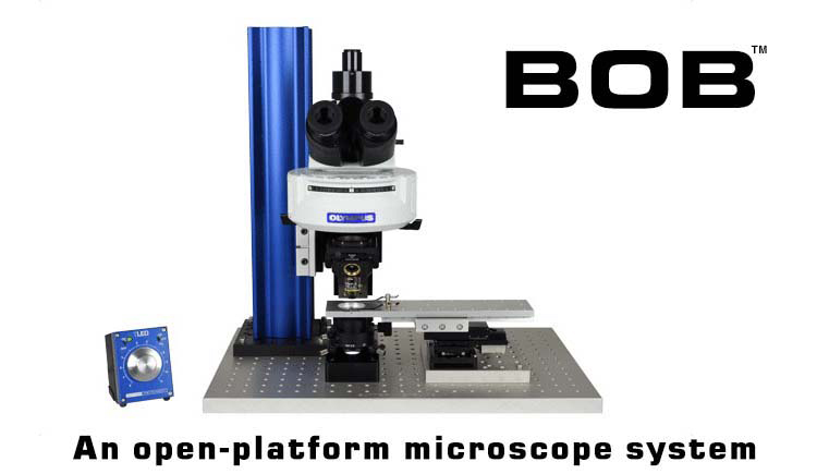 BOB Open Design Upright Microscope